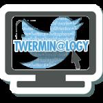 Twerminology